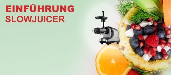 blog-einfuehrung-slowjuicer-entsafter-byzoo-rhino-angelslowjuicer
